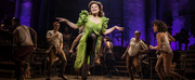 Broadway Jukebox: 40 Songs for a Very Broadway Summer! Photo