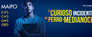 BWW Previews: EL CURIOSO INCIDENTE DEL PERRO A MEDIANOCHE at Maipo Theater