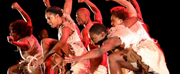 VIDEO: Step Afrika! In STONO Now Streaming From Joyce Theater Photo