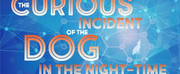 Manoa Valley Theatre Presents THE CURIOUS INCIDENT OF THE DOG IN THE NIGHT-TIME