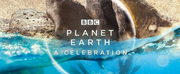 BBC America Brings Harmony To Homes This Summer With PLANET EARTH: A CELEBRATION Photo