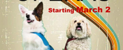 Penobscot Theatre Company Presents THE DOG OPERAS Photo