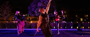 BWW Review: Milwaukee Opera Theatre & Danceworks Team Up for ENCHANTED PARK(ING LOT) Photo