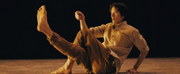 Scottish Dance Theatre Celebrates International Dance Day With The World Premiere Of THIN  Photo