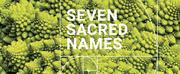 Michael Harrison Releases Seven Sacred Names