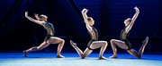 American Repertory Ballet Announces Its Digital Spring Season Photo