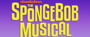 Marshall Ellis Performing Arts Center Presents THE SPONGEBOB MUSICAL Photo