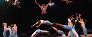 Circus Harmony Honored by FOCUS St. Louis