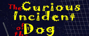 Casting Announced For TampaReps THE CURIOUS INCIDENT OF THE DOG IN THE NIGHT-TIME