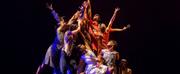 Dallas Black Dance Theatre Celebrates African American Dance Masters In a Virtual Performa Photo