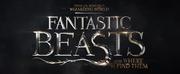 FANTASTIC BEASTS 3 Announces Release Date & Title