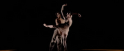 VIDEO: Get A First Look At The Royal Ballets 21st Century Choreographers