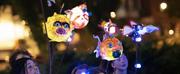 Light Up Quebec Turns2020 Into Light, Lanterns And Magic Photo