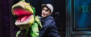LITTLE SHOP OF HORRORS Will Reopen Off-Broadway in September Photo