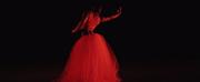 Ballet Idaho Releases NEWDANCE! Photo