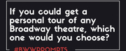 BWW Prompts: Which Broadway Theater Would You Want to Tour? Photo