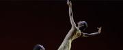 VIDEO: Watch Francesca Hayward Perform Pas De Deux From Royal Operas WITIHIN THE HODEL HOU Photo
