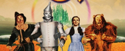 Nicole Kassell Will Direct Remake of THE WIZARD OF OZ Photo