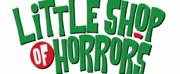 Skylight Music Theatre Announces Cast & Creative Team For LITTLE SHOP OF HORRORS