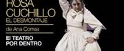 Gran Teatro Nacional Postpones ROSA CUCHILLO, EL DESMONTAJE Photo