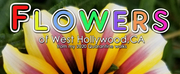Mike Pingel Releases New Book FLOWERS OF WEST HOLLYWOOD: FROM MY 2020 QUARANTINE WALKS Photo