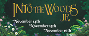Melody Lane Performing Arts Center Presents INTO THE WOODS JR.