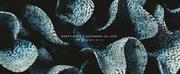 Robot Koch & Savannah Jo Lack Release New EP OTHERWHERE