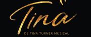 BWW Feature: The Dutch TINA TURNER IS CASTED: NYASSA ALBERTA IS TINA TURNER