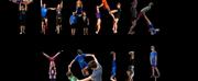 Circus Harmonys 1st Online Event Raises $67K+ Photo