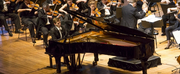 Sydney International Piano Competition Announces THE SYDNEY PIANO MARATHON Photo