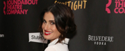 Idina Menzel is in Talks to Play the Evil Stepmother in the Upcoming CINDERELLA Film