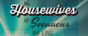 THE HOUSEWIVES OF SECAUCUS: WHAT A DRAG! to Premiere At The Duplex