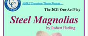 STEEL MAGNOLIAS Comes to CCHS Dawghouse Theatre Tonight Photo