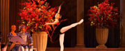 Teatr Wielki - Opera Narodowa Presents Online Ballet Gala Photo