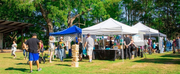 Elm Streets Annual Art on the Green Goes In-Person and Digital Photo
