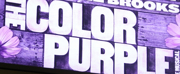 THE COLOR PURPLE Movie Musical Set for 2023 Release Photo