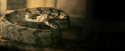 HBOs ALABAMA SNAKE Premieres Dec. 9 Photo