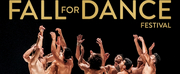 BWW Review: Dance Fail at Fall For Dance