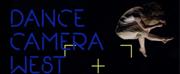 Dance Camera West Announces 2021 Virtual Dance-Film Festival Photo