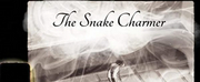 NYCs HeIsTheArtist Releases Instrumental EDM Single SnakeCharmer Photo