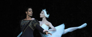 Birmingham Royal Ballet Glides Into 2020 With UK Tour Of SWAN LAKE