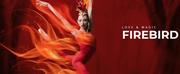 Miami City Ballet Will Premiere Balanchine and Robbins\