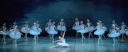 Russian Ballet Theatre's SWAN LAKE Comes To Popejoy Hall