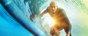 ABC Announces the Cast of THE ULTIMATE SURFER Photo