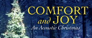 Liz Callaway to Release New Christmas Album COMFORT AND JOY Photo