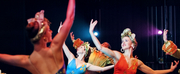 BWW Review: COCKTAIL HOUR THE SHOW at Ballets With A Twist