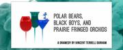 Playfest 2020 to Present POLAR BEARS, BLACK BOYS, AND PRAIRIE FRINGED ORCHIDS Photo