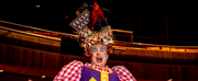 Thousands of Tickets Sold as The Marlowe Theatres Socially Distanced Pantomime Goes On-Sal Photo