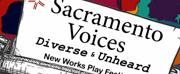 Sacramento Theatre Company to Host SACRAMENTO VOICES – NEW WORKS PLAY FESTIVAL Photo