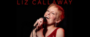 BWW Review: LIZ CALLAWAY PERFORMS VIRTUAL HOLIDAY CONCERT IN YOUR HOME from The Straz Cent Photo